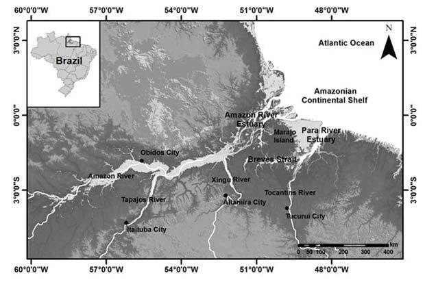 A modelagem hidrodinâmica do Sistema Estuarino do rio Amazonas